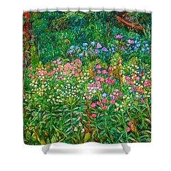 Wildflowers Near Fancy Gap Shower Curtain by Kendall Kessler
