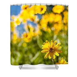 Wildflowers Standing Out Abstract Shower Curtain by Chad Dutson