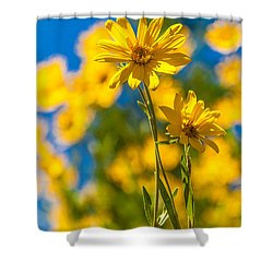Wildflowers Standing Out Shower Curtain by Chad Dutson
