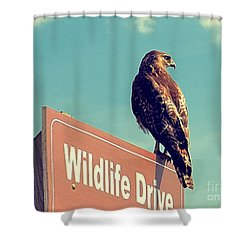 Wildlife Drive Greeter Shower Curtain