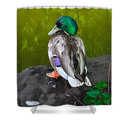 Wildlife In Central Park Shower Curtain