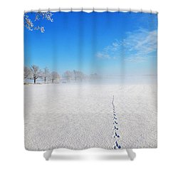 Wildlife Tracks Shower Curtain