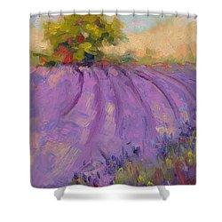Wildrain Lavender Farm Shower Curtain