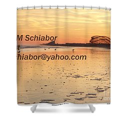 Wildwood Sunset Shower Curtain by Eric  Schiabor