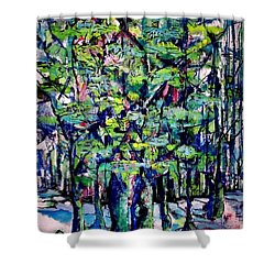 Will His Playground Exsist? Shower Curtain