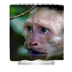 Will Work For Food Shower Curtain by Gary Keesler