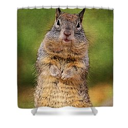 Will Work For Peanuts Shower Curtain