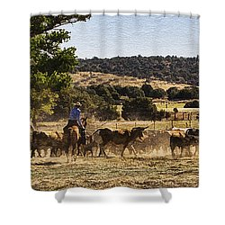 Williamson Valley Roundup 6 Shower Curtain
