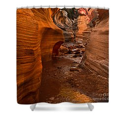 Willis Creek Slot Canyon Shower Curtain