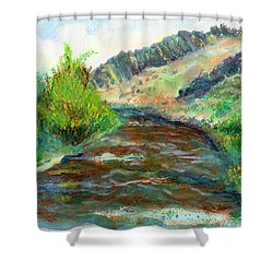 Willow Creek In Spring Shower Curtain by C Sitton