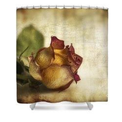 Wilted Rose Shower Curtain by Veikko Suikkanen