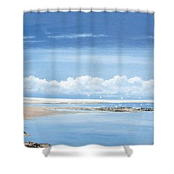 Winchelsea Gulls Shower Curtain by Steve Crisp