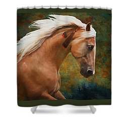 Wind Chaser Shower Curtain