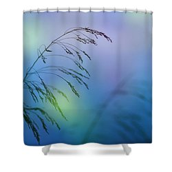 Wind Colors Shower Curtain by Guido Montanes Castillo
