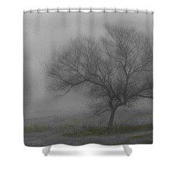 Wind Swept Tree Shower Curtain