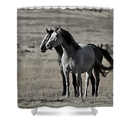 Windblown Shower Curtain by Wes and Dotty Weber