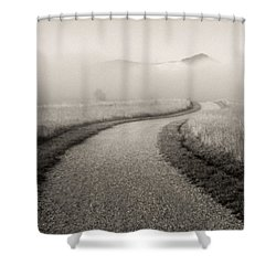 Winding Path And Mist Shower Curtain by Marilyn Hunt