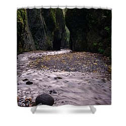 Winding Through Oneonta  Gorge Shower Curtain by Jeff Swan