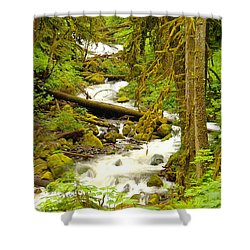 Winding Through The Forest Shower Curtain by Jeff Swan