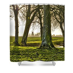 Windmill And Trees In Groningen Shower Curtain
