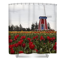 Windmill Red Tulips Shower Curtain by Athena Mckinzie