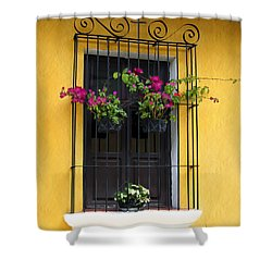 Window At Old Antigua Shower Curtain by Kurt Van Wagner