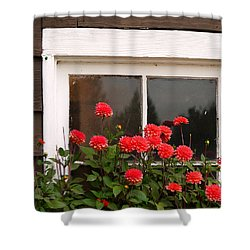 Shower Curtain featuring the photograph Window Box Delight by Jordan Blackstone