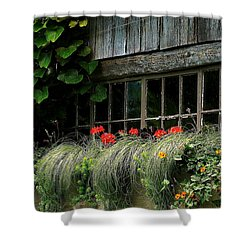 Window Boxes Shower Curtain