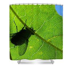 Window Of Opportunities - Featured 3 Shower Curtain by Alexander Senin