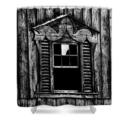 Window Pane Shower Curtain by Robert Geary