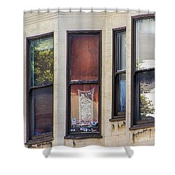 Shower Curtain featuring the photograph Windows by Kate Brown