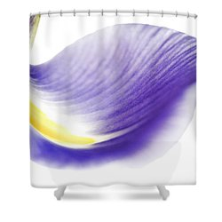 Windswept Shower Curtain by Deb Halloran
