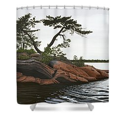 Windswept Shower Curtain