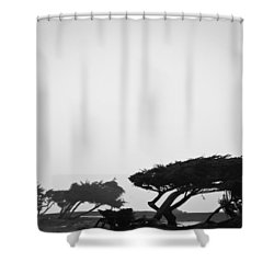 Windswept Shoreline Shower Curtain by Melinda Ledsome