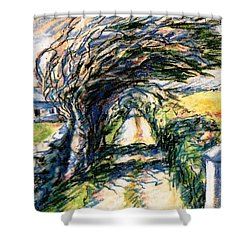 Shower Curtain featuring the painting Windswept Tree On Aran Island Galway Ireland  by Trudi Doyle