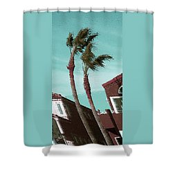 Windy Day By The Ocean  Shower Curtain by Ben and Raisa Gertsberg