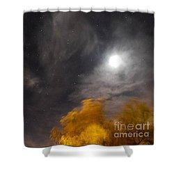 Windy Night Shower Curtain