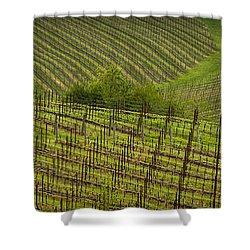 Wine Design Shower Curtain by Jean Noren