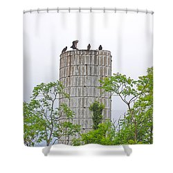 Wing And A Prayer Shower Curtain