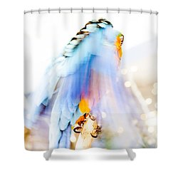 Wing Dream Shower Curtain by Fran Riley