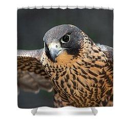Winged Portrait Shower Curtain