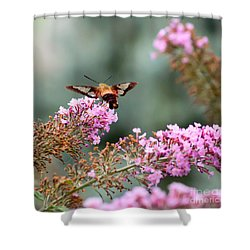Shower Curtain featuring the photograph Wings In The Flowers by Kerri Farley