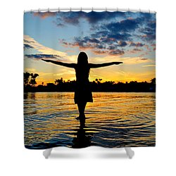 Wings Shower Curtain by Laura Fasulo