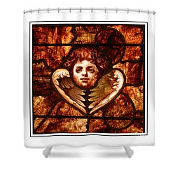 Wings Of An Angel Shower Curtain