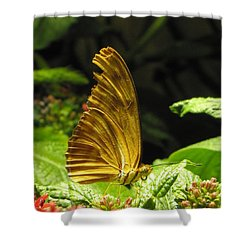Wings Of Gold Shower Curtain by Jennifer Wheatley Wolf