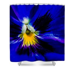 Wings Of The Night Shower Curtain by Alexander Senin