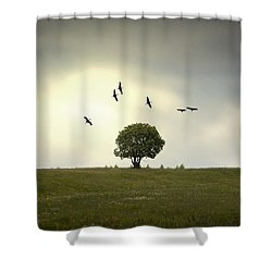 Wings Over The Tree Shower Curtain