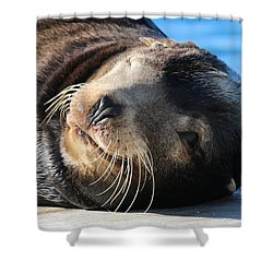 Wink Wink Shower Curtain