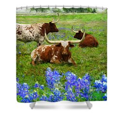 Da157 Winkin Blinkin And Nod Daniel Adams  Shower Curtain
