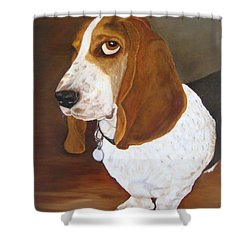 Winston Shower Curtain